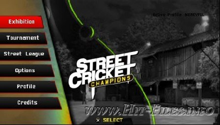 how to play street cricket on psp