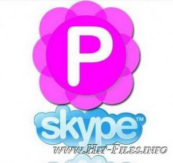 Pamela for Skype v4.8.0.74