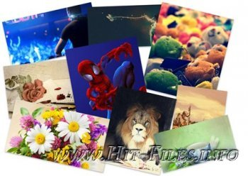 Incredible Mixed Wallpapers Set 216