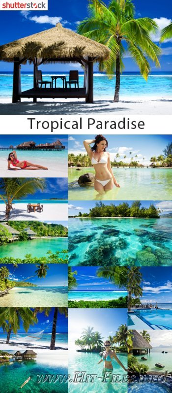 Tropical Paradise - 25 HQ JPEG Stock Photo